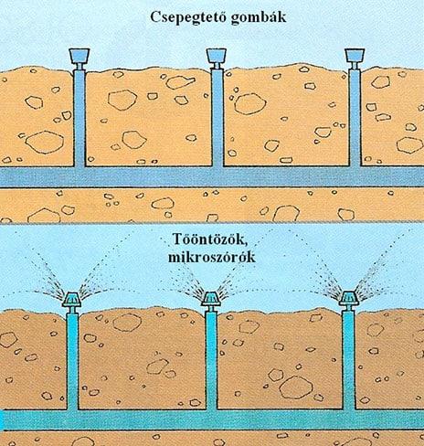Csepegtető öntözés házikertben - csepegtető gombák, tőöntözők és mikroszórók felszín alatti megtáplálása