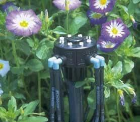 Öntözőrendszer telepítés - Dripmaster mikroszóró leállás