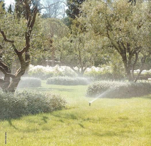 Hatékony öntözőrendszer - spray szórófej fotó